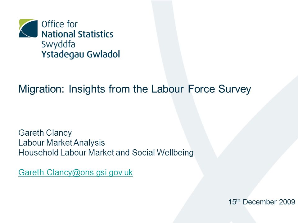 Migration: Insights from the Labour Force Survey Gareth Clancy Labour Market Analysis Household Labour Market and Social Wellbeing 15 th December 2009