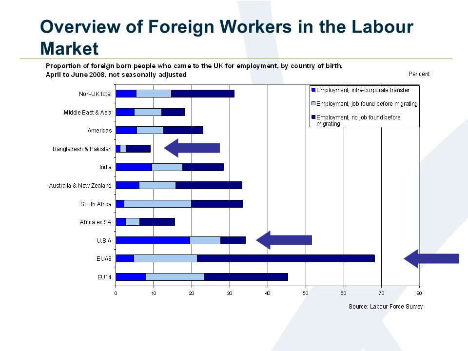 Overview of Foreign Workers in the Labour Market