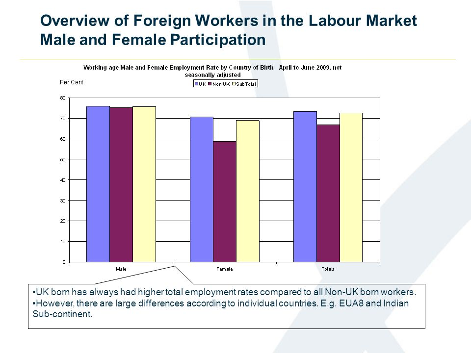 Overview of Foreign Workers in the Labour Market Male and Female Participation UK born has always had higher total employment rates compared to all Non-UK born workers.