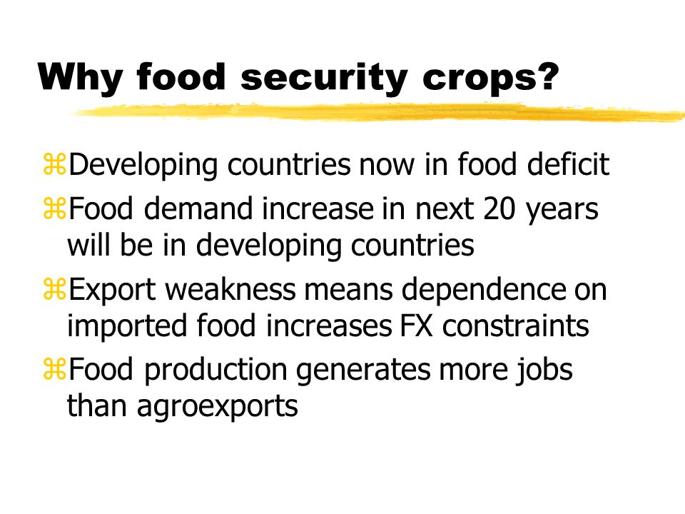 Why food security crops.