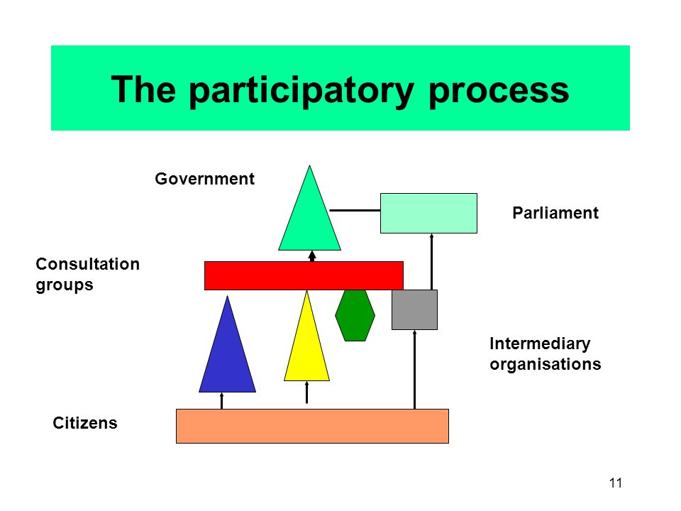 11 The participatory process Government Citizens Intermediary organisations Parliament Consultation groups