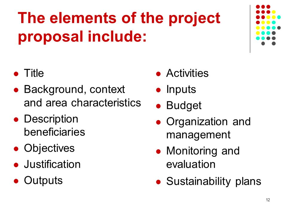 12 The elements of the project proposal include: Title Background, context and area characteristics Description beneficiaries Objectives Justification Outputs Activities Inputs Budget Organization and management Monitoring and evaluation Sustainability plans