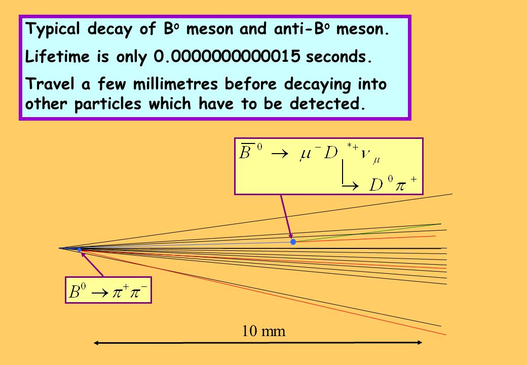 10 mm Typical decay of B o meson and anti-B o meson.