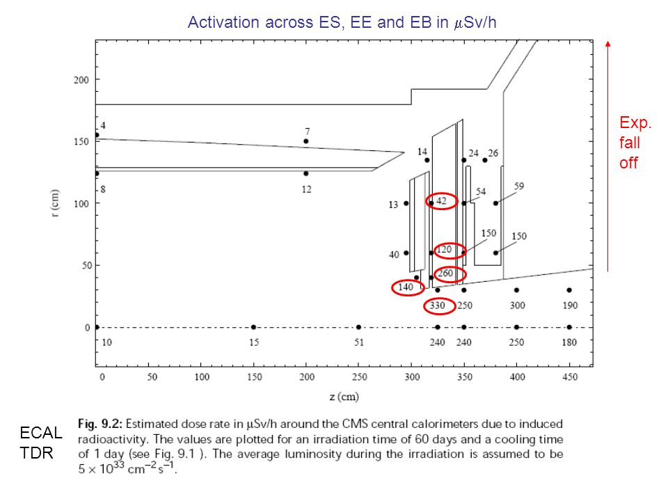 Activation across ES, EE and EB in Sv/h Exp. fall off ECAL TDR