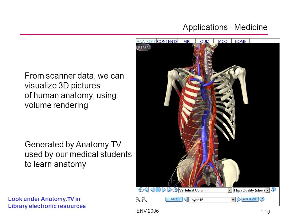 ENV 2006 1.10 Applications - Medicine From scanner data, we can visualize 3D pictures of human anatomy, using volume rendering Generated by Anatomy.TV used by our medical students to learn anatomy Look under Anatomy.TV in Library electronic resources