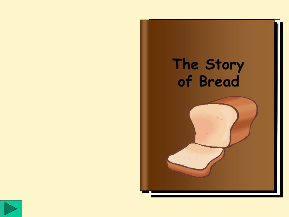 SEN Lets Celebrate The Story Of Bread