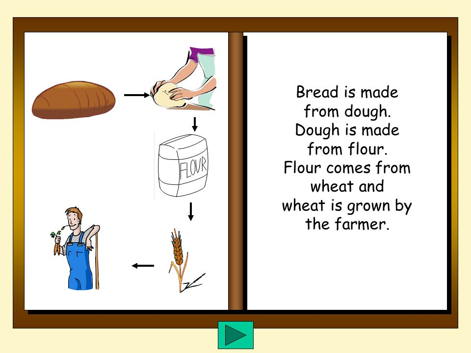 Do you want to know where bread comes from