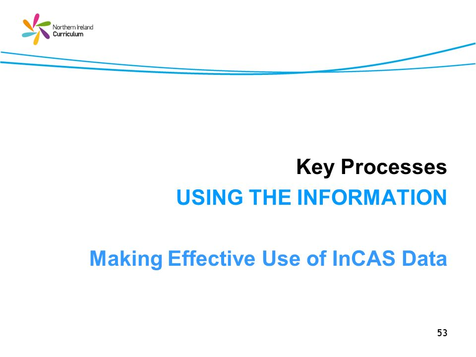 53 Key Processes USING THE INFORMATION Making Effective Use of InCAS Data