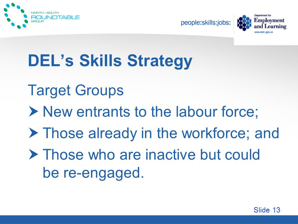Slide 13 DELs Skills Strategy Target Groups New entrants to the labour force; Those already in the workforce; and Those who are inactive but could be re-engaged.