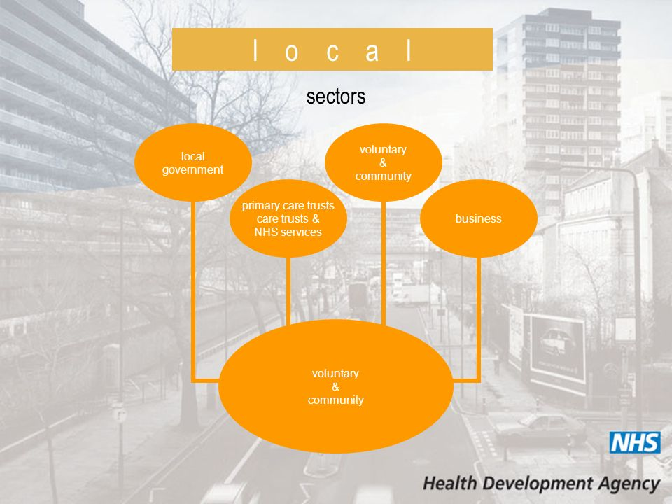 l o c a l sectors local government business primary care trusts care trusts & NHS services voluntary & community voluntary & community