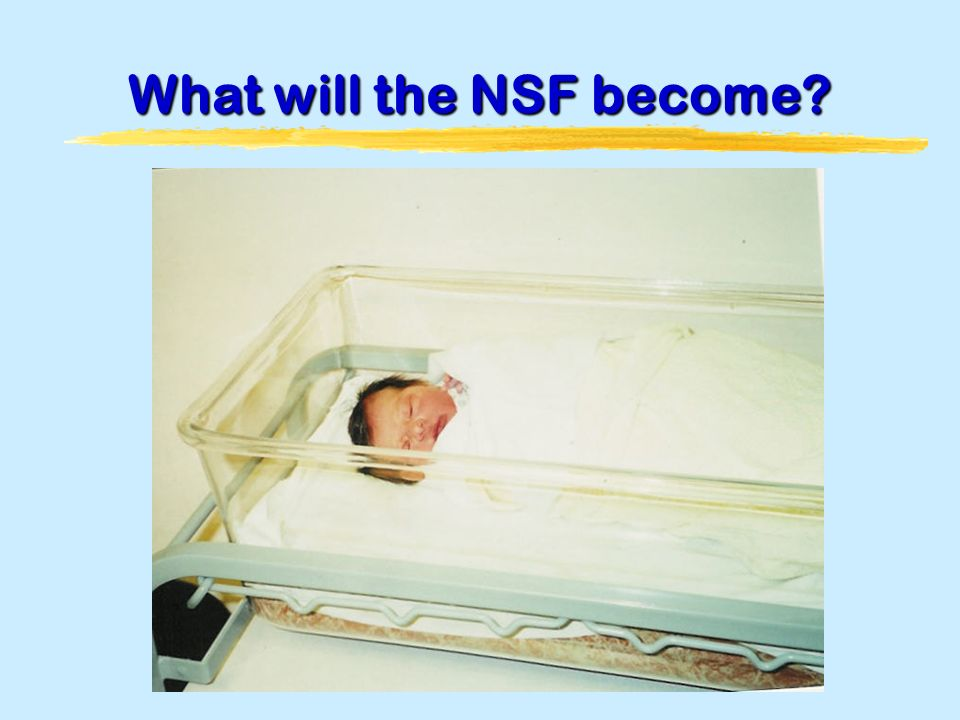 What will the NSF become