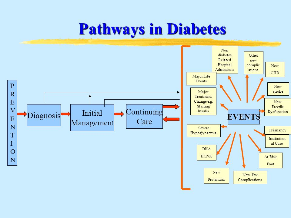 Pathways in Diabetes Pathways in Diabetes Diagnosis Initial Management Continuing Care PREVENTIONPREVENTION Pregnancy EVENTS Non diabetes Related Hospital Admissions New Protenuria New CHD New stroke New Erectile Dysfunction Institution al Care At Risk Foot New Eye Complications DKA HONK Severe Hypoglycaemia Major Life Events Major Treatment Change e.g.