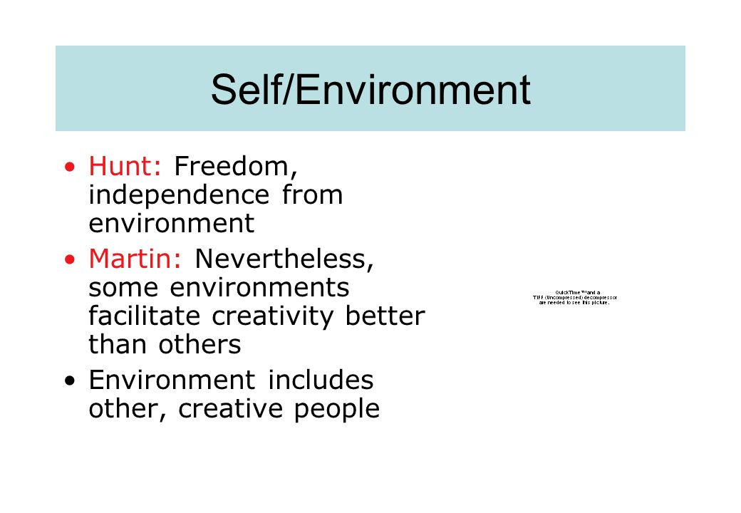 Self/Environment Hunt: Freedom, independence from environment Martin: Nevertheless, some environments facilitate creativity better than others Environment includes other, creative people