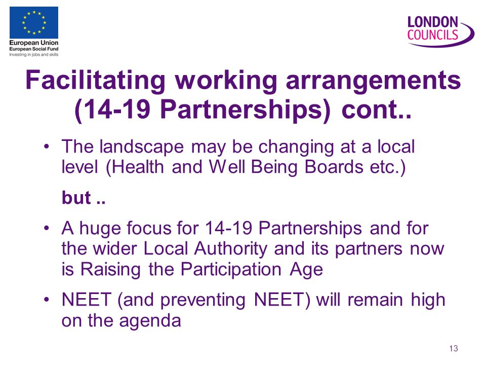 13 Facilitating working arrangements (14-19 Partnerships) cont..