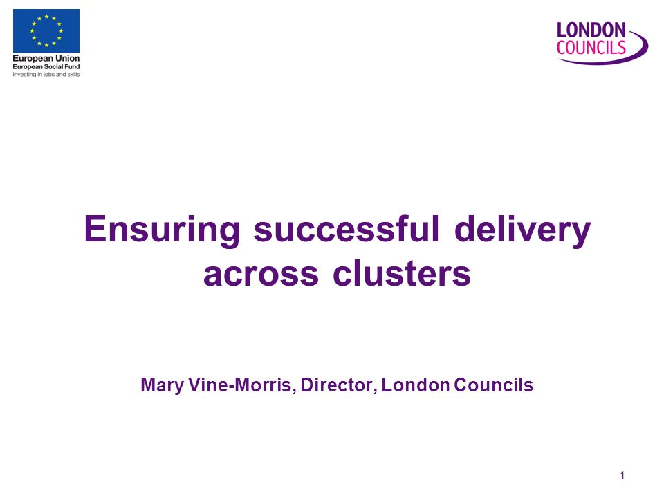 1 Ensuring successful delivery across clusters Mary Vine-Morris, Director, London Councils