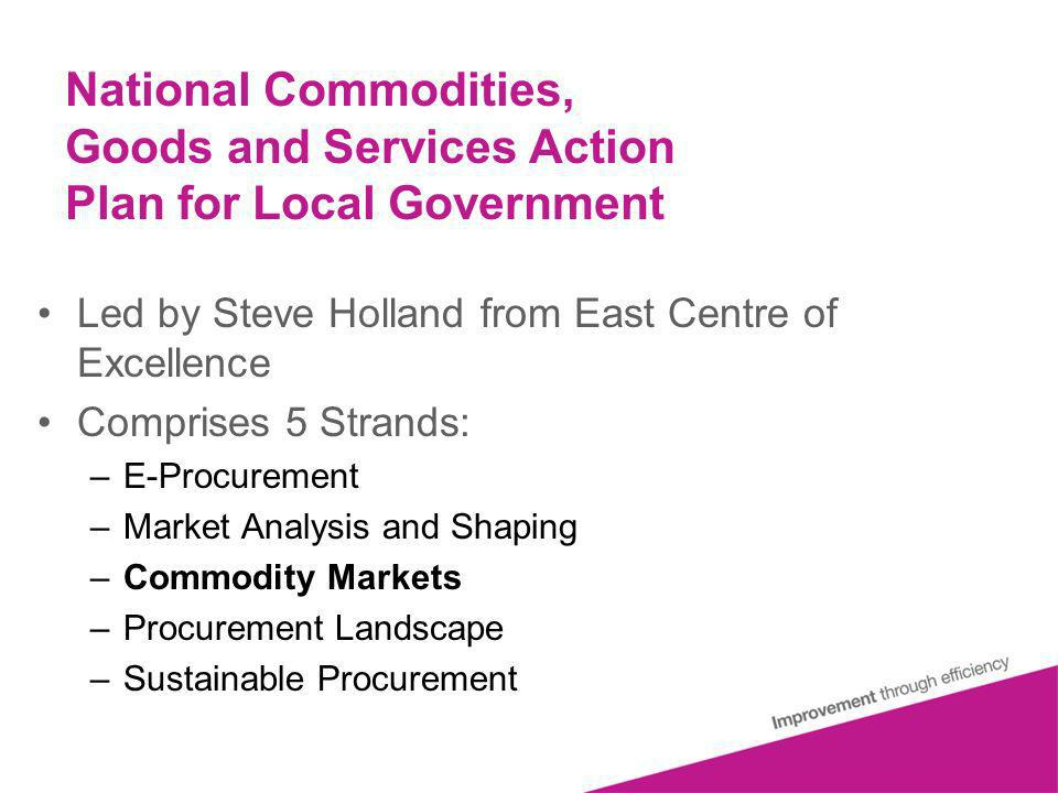 National Commodities, Goods and Services Action Plan for Local Government Led by Steve Holland from East Centre of Excellence Comprises 5 Strands: –E-Procurement –Market Analysis and Shaping –Commodity Markets –Procurement Landscape –Sustainable Procurement