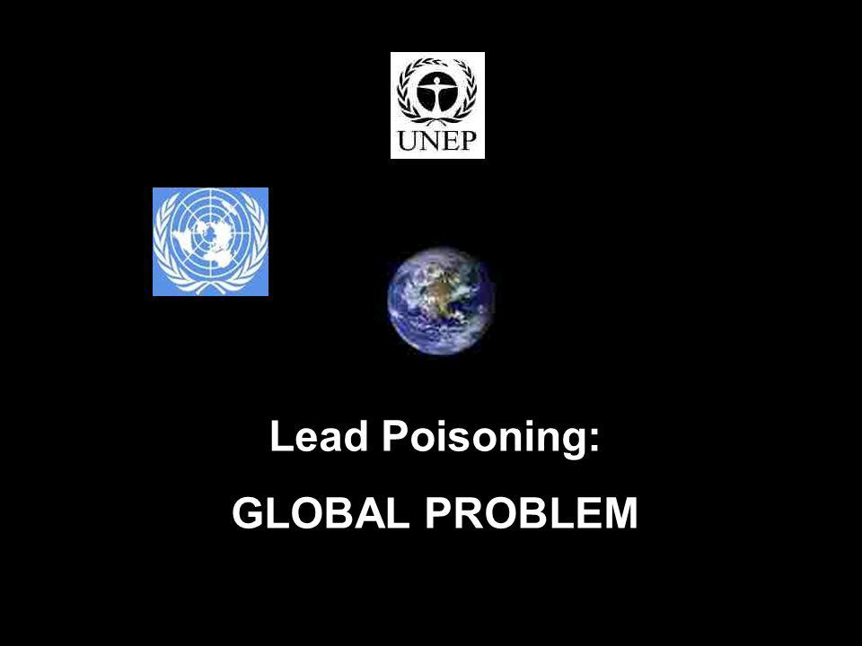 © Copyright 2010 Lead Paint Safety Association www.lipsa.org.uk7 Lead Poisoning: GLOBAL PROBLEM