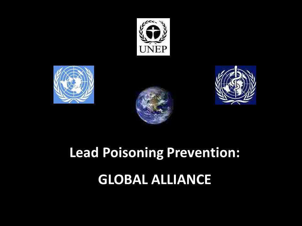 © Copyright 2010 Lead Paint Safety Association www.lipsa.org.uk8 Lead Poisoning Prevention: GLOBAL ALLIANCE