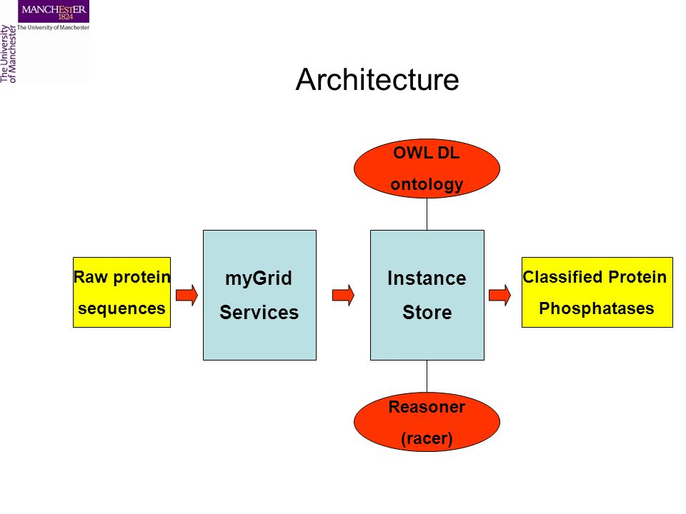 Architecture Instance Store myGrid Services OWL DL ontology Reasoner (racer) Classified Protein Phosphatases Raw protein sequences