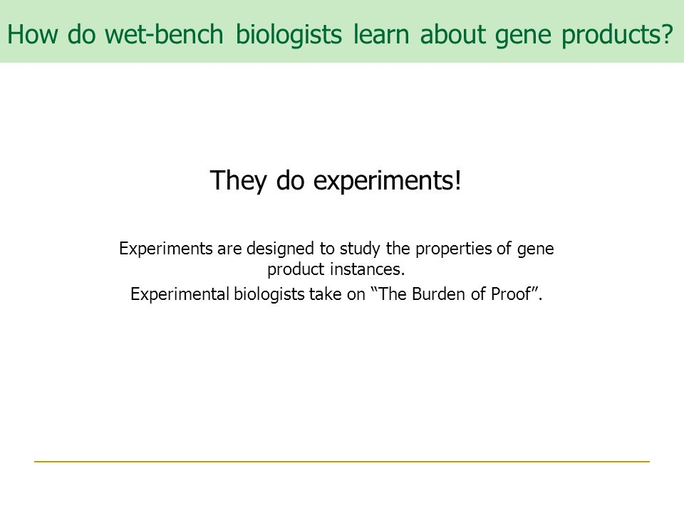 They do experiments. Experiments are designed to study the properties of gene product instances.