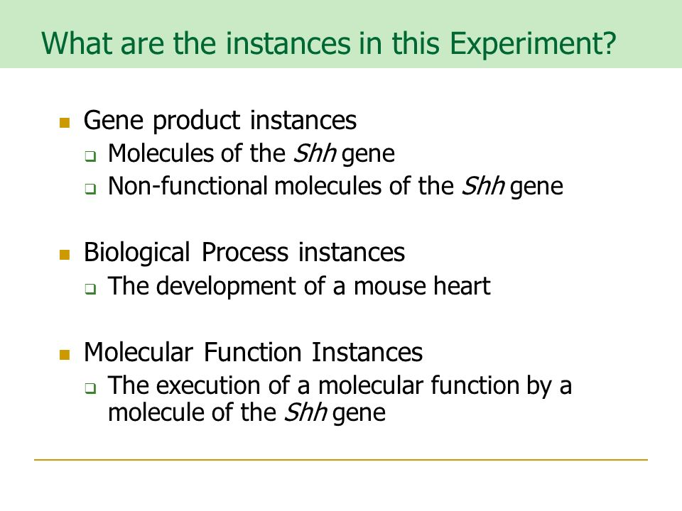 What are the instances in this Experiment.