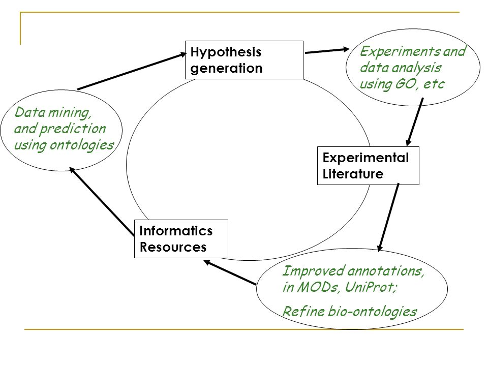 Experimental Literature Hypothesis generation Informatics Resources Data mining, and prediction using ontologies Experiments and data analysis using GO, etc Improved annotations, in MODs, UniProt; Refine bio-ontologies