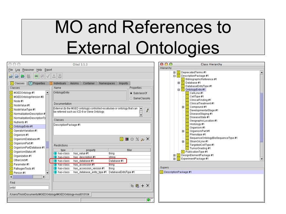 MO and References to External Ontologies