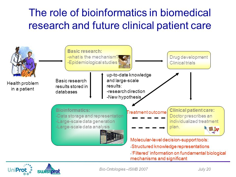 July 20Bio-Ontologies –ISMB 2007 The role of bioinformatics in biomedical research and future clinical patient care Health problem in a patient Bioinformatics: -Data storage and representation -Large-scale data generation -Large-scale data analysis Basic research: -what is the mechanism.