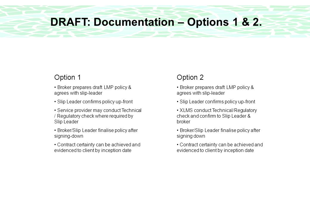 DRAFT: Documentation – Options 1 & 2.