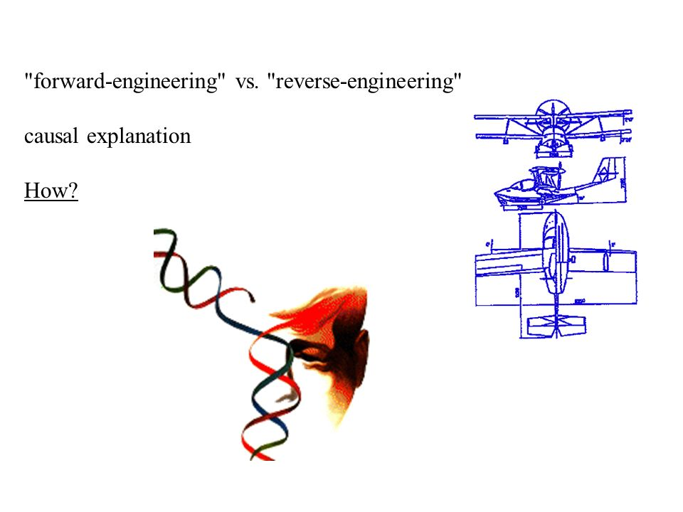 forward-engineering vs. reverse-engineering causal explanation How
