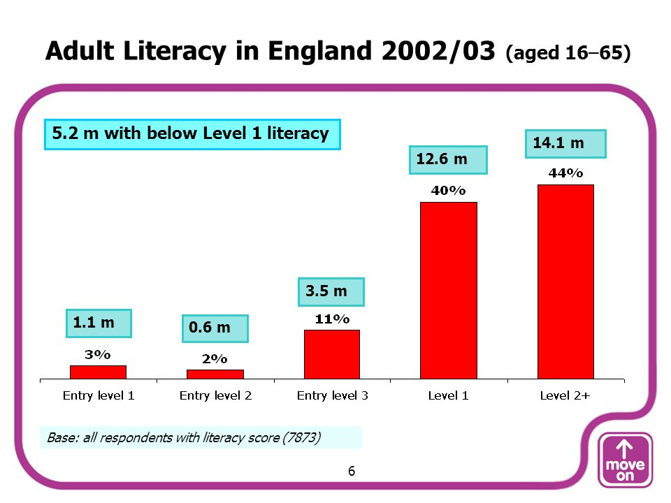 Adult Literacy in England 2002/03 (aged 16–65) Base: all respondents with literacy score (7873) 1.1 m 0.6 m 3.5 m 12.6 m 14.1 m 5.2 m with below Level 1 literacy 6