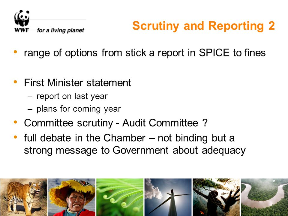 Scrutiny and Reporting 2 range of options from stick a report in SPICE to fines First Minister statement –report on last year –plans for coming year Committee scrutiny - Audit Committee .