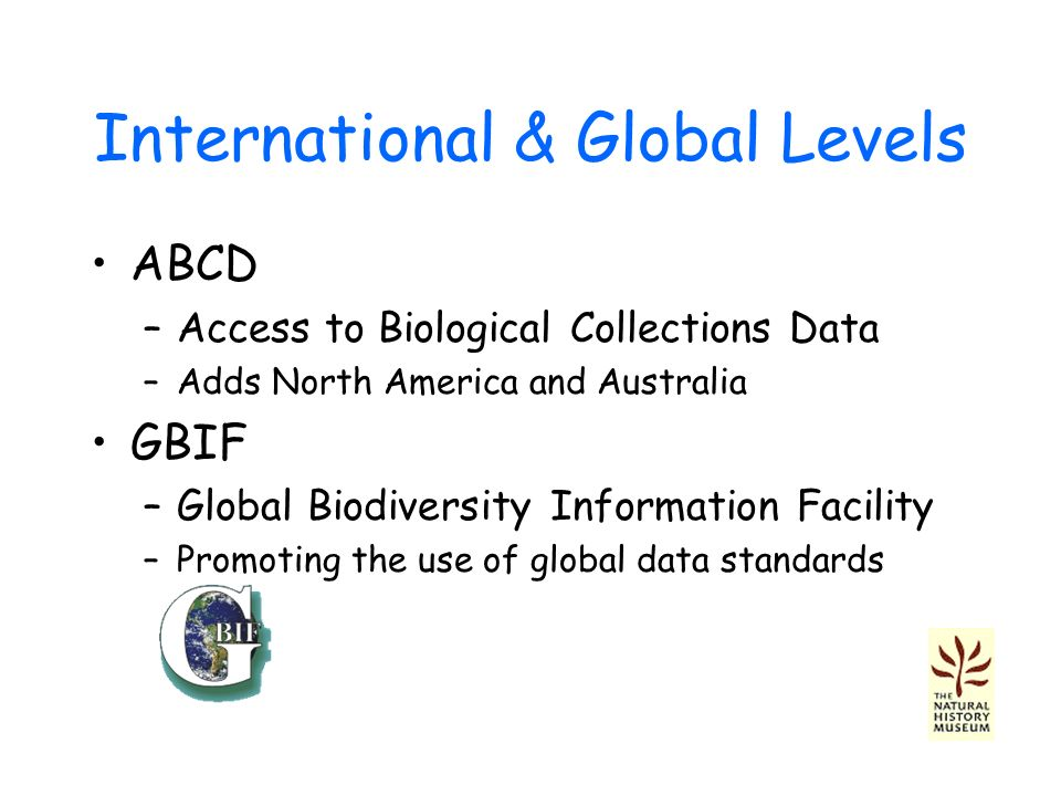 International & Global Levels ABCD –Access to Biological Collections Data –Adds North America and Australia GBIF –Global Biodiversity Information Facility –Promoting the use of global data standards