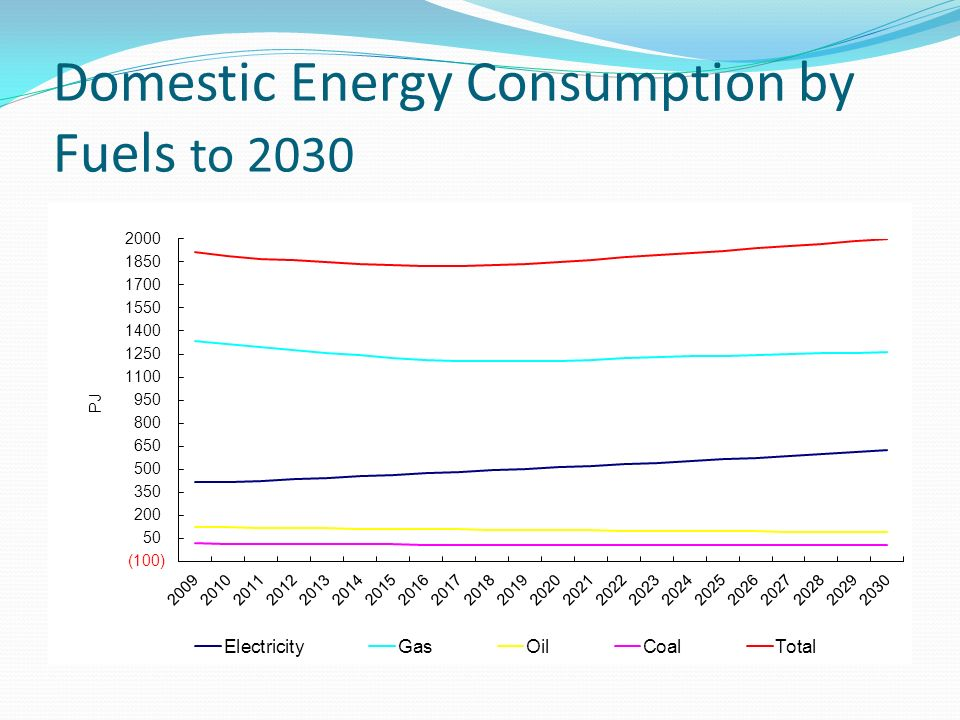Domestic Energy Consumption by Fuels to 2030
