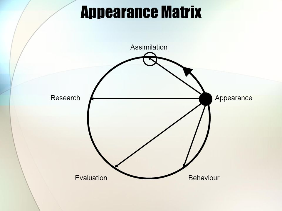 Appearance Matrix Research EvaluationBehaviour Appearance Assimilation