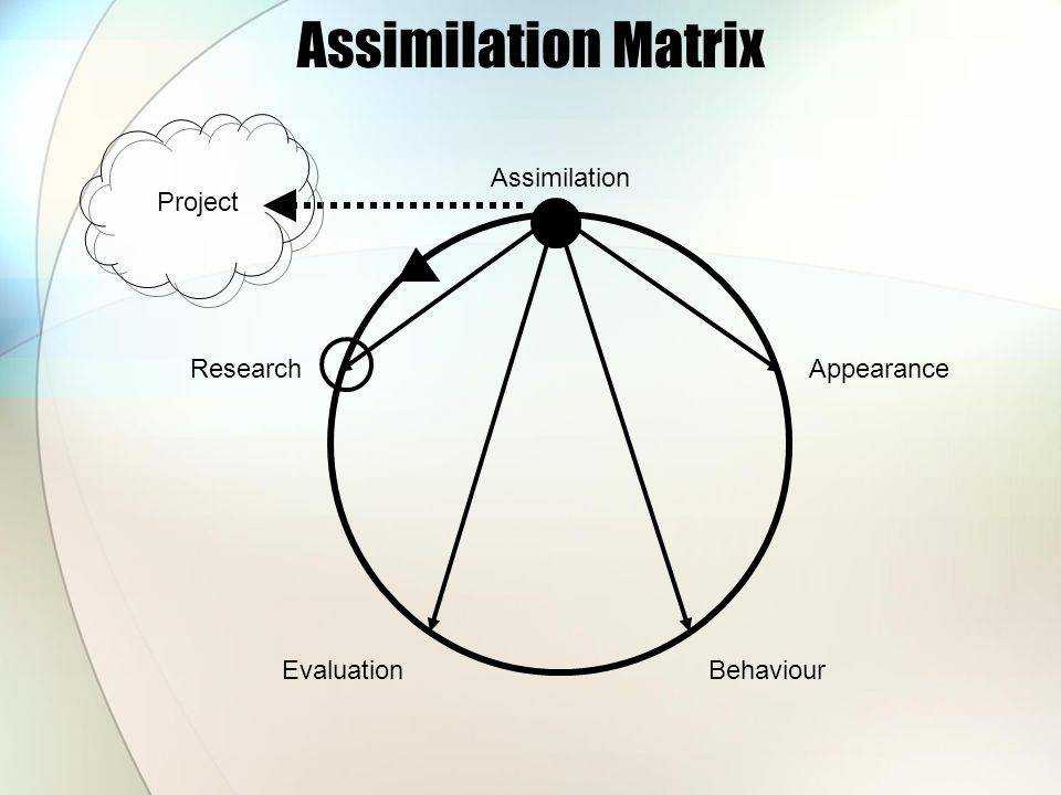 Assimilation Matrix Research EvaluationBehaviour Appearance Assimilation Project