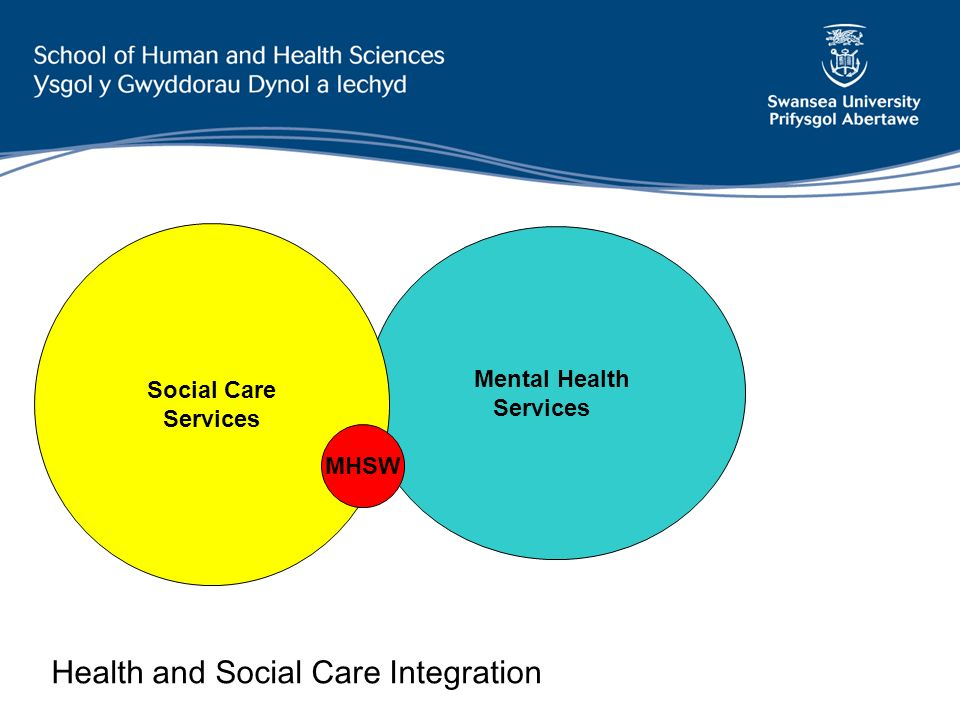 Mental Health Services Social Care Services MHSW Health and Social Care Integration