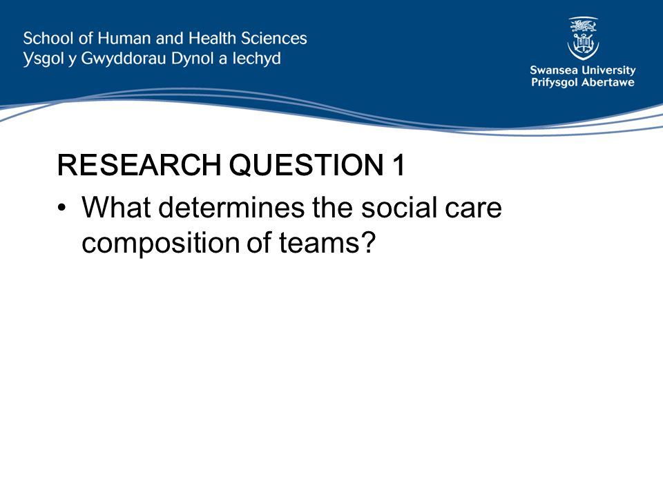 RESEARCH QUESTION 1 What determines the social care composition of teams
