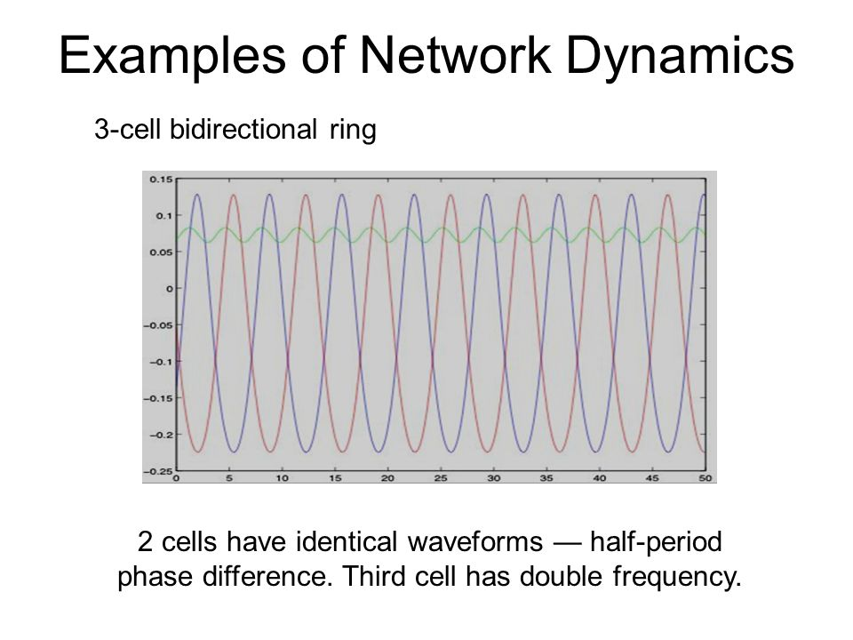 Examples of Network Dynamics 3-cell bidirectional ring Identical waveforms 1/3-period phase difference