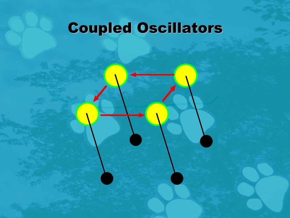Coupled Oscillators