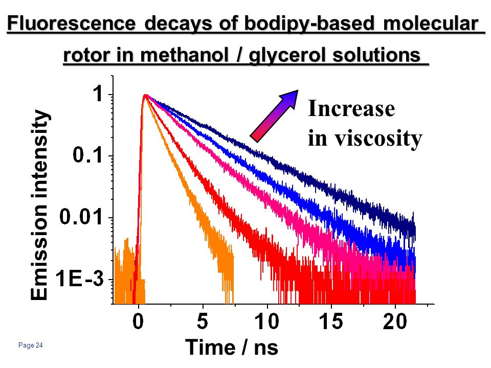 Page 24 Increase in viscosity Time / ns Emission intensity Fluorescence decays of bodipy-based molecular rotor in methanol / glycerol solutions