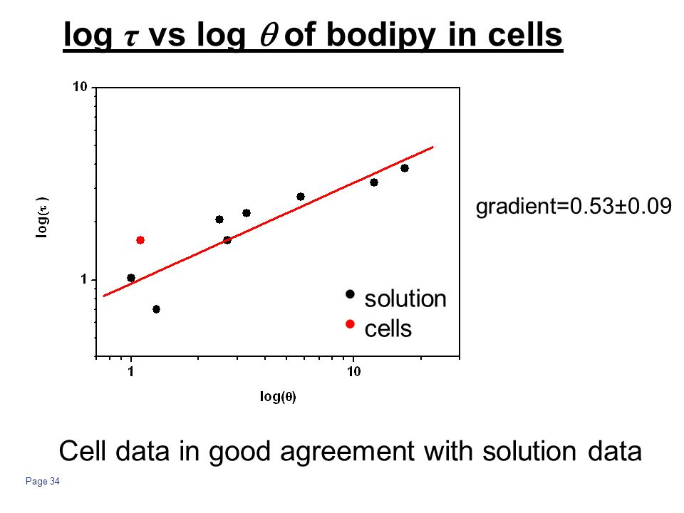 Page 34 log τ vs log of bodipy in cells solution cells Cell data in good agreement with solution data gradient=0.53±0.09