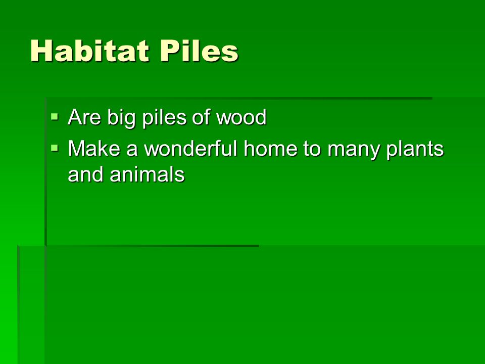 Habitat Piles Are big piles of wood Are big piles of wood Make a wonderful home to many plants and animals Make a wonderful home to many plants and animals