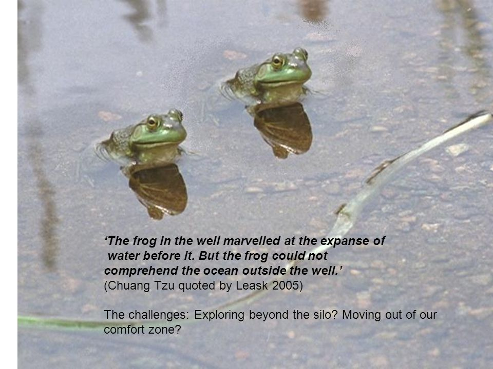 8 The frog in the well marvelled at the expanse of water before it.