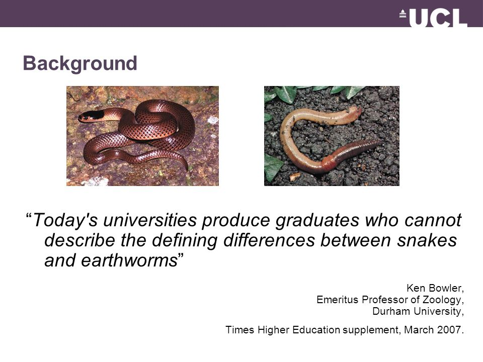 Background Today s universities produce graduates who cannot describe the defining differences between snakes and earthworms Ken Bowler, Emeritus Professor of Zoology, Durham University, Times Higher Education supplement, March 2007.