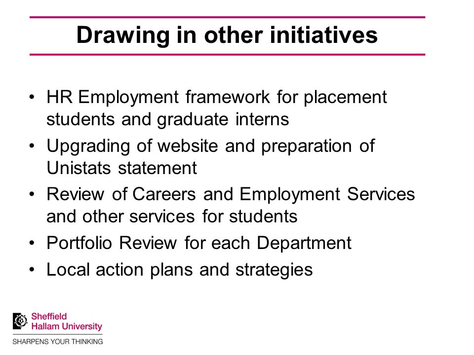 Drawing in other initiatives HR Employment framework for placement students and graduate interns Upgrading of website and preparation of Unistats statement Review of Careers and Employment Services and other services for students Portfolio Review for each Department Local action plans and strategies
