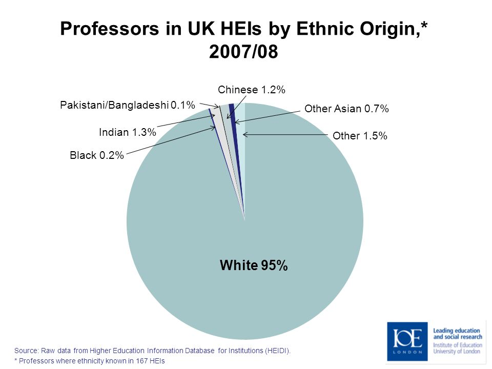 Professors in UK HEIs by Ethnic Origin,* 2007/08 White 95% Black 0.2% Indian 1.3% Pakistani/Bangladeshi 0.1% Chinese 1.2% Other Asian 0.7% Other 1.5% Source: Raw data from Higher Education Information Database for Institutions (HEIDI).