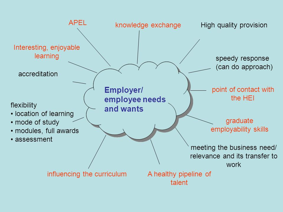 Employer/ employee needs and wants High quality provision speedy response (can do approach) meeting the business need/ relevance and its transfer to work accreditation APEL knowledge exchange Employer/ employee needs and wants point of contact with the HEI graduate employability skills influencing the curriculum flexibility location of learning mode of study modules, full awards assessment A healthy pipeline of talent Interesting, enjoyable learning