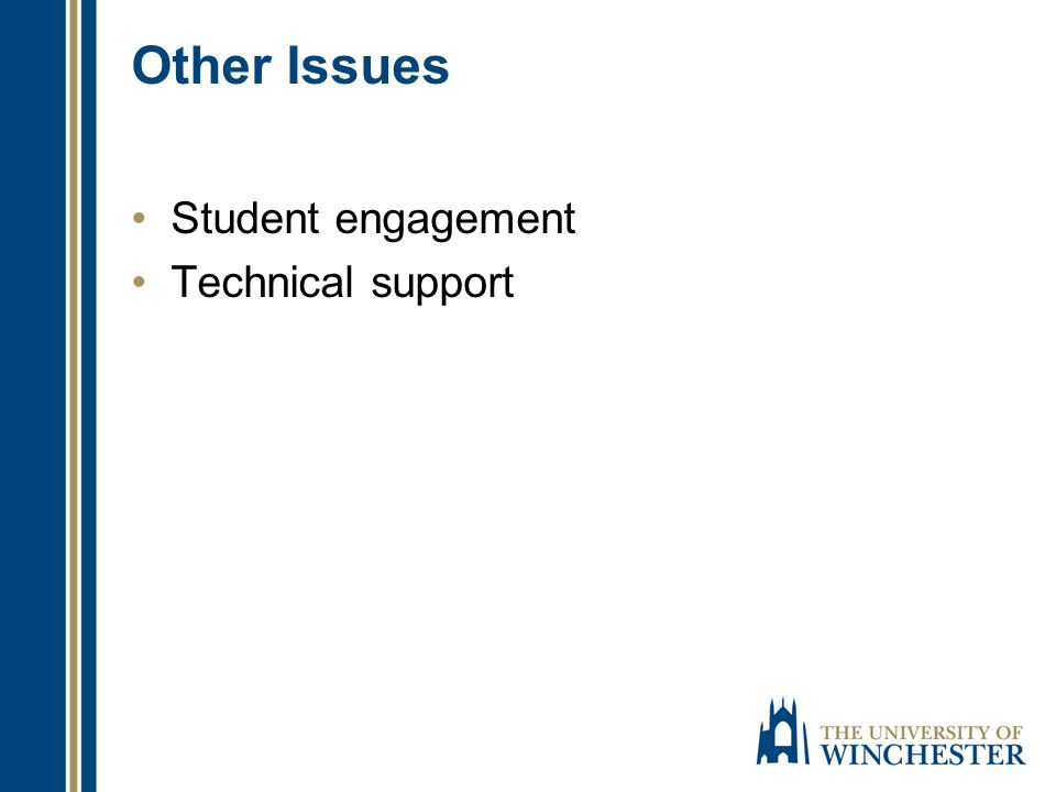 Other Issues Student engagement Technical support