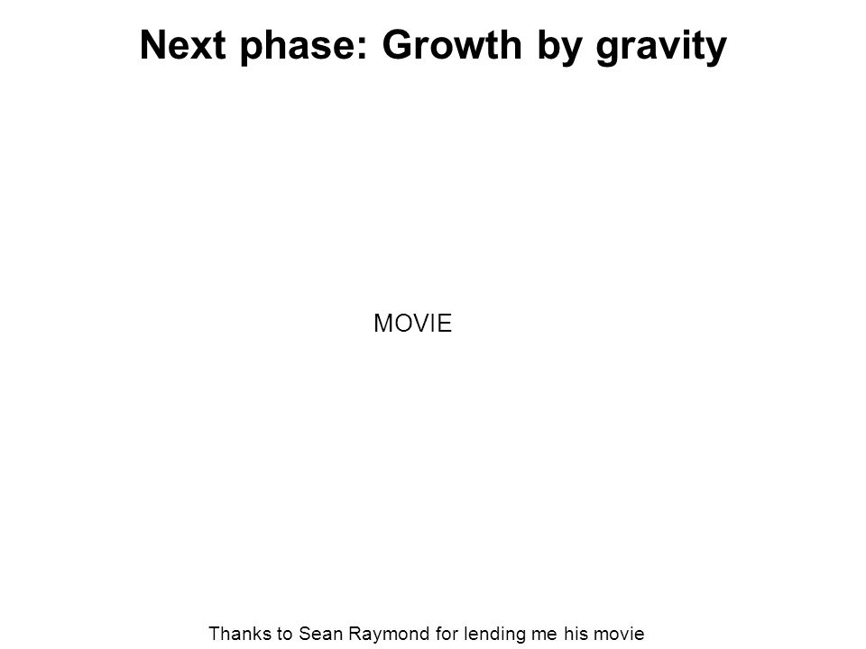 Next phase: Growth by gravity Thanks to Sean Raymond for lending me his movie MOVIE